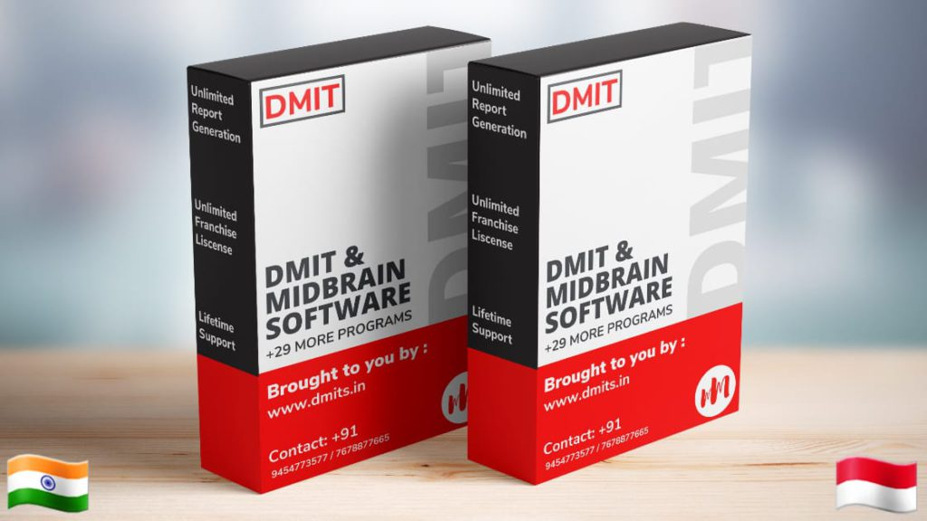 DMIT Software in Indonesia